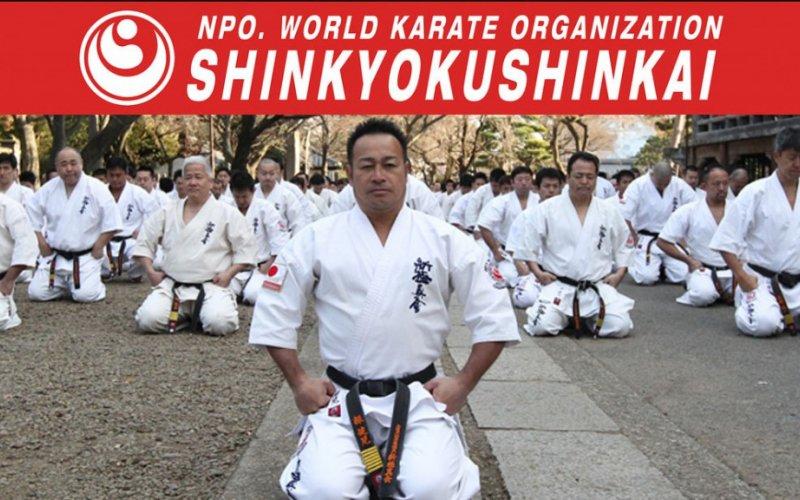 KARATE SHINKYOKUSHINKAI